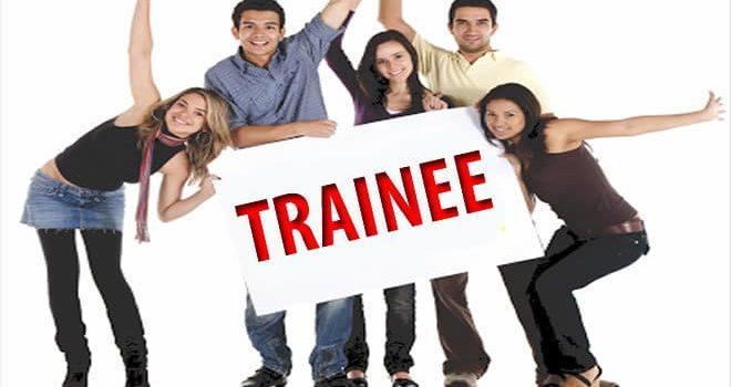 Como se preparar para etapas de trainee