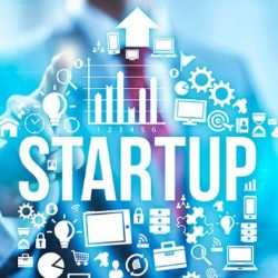 startup cresceu